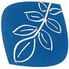 Bild zu Nußbaum-Apotheke in Solingen