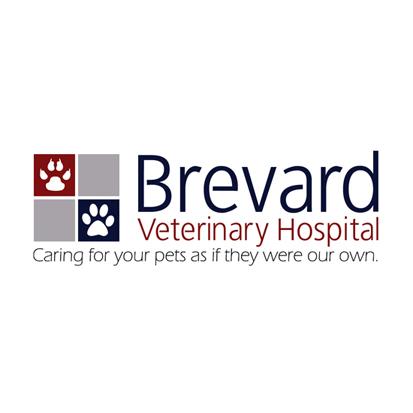 Brevard Veterinary Hospital