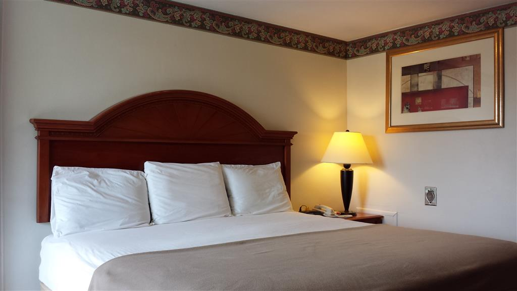 Walton Manor Inn Bed Breakfast Palmyra Pa