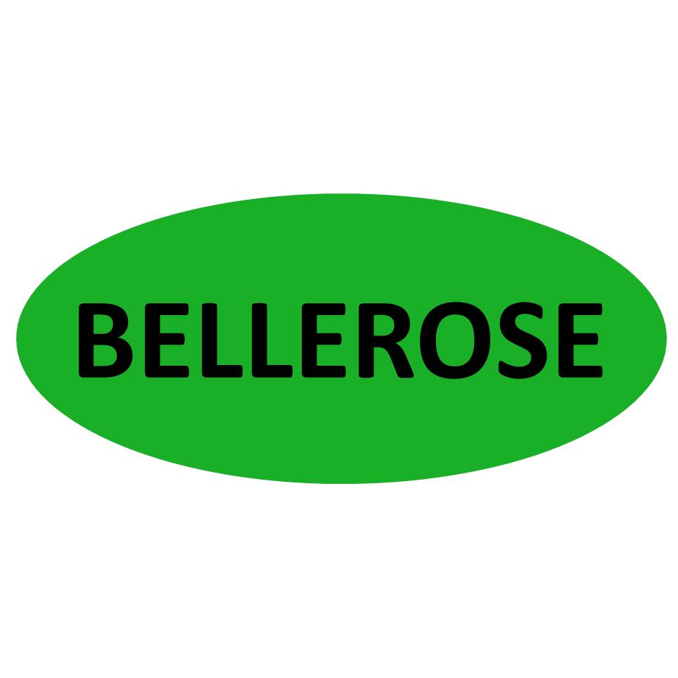 Bellerose Roofing & Siding