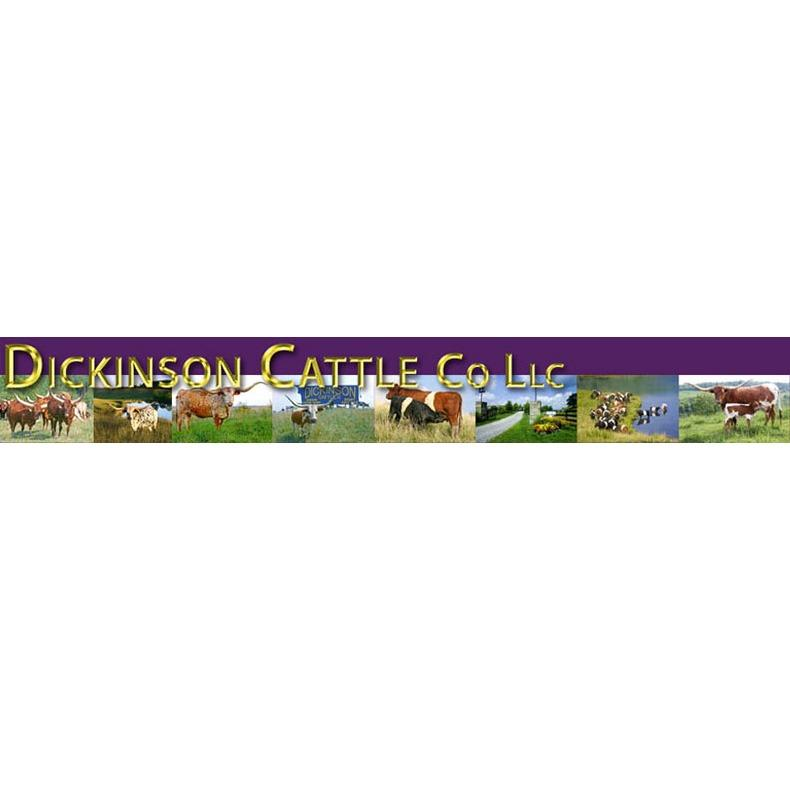 Dickinson Cattle Co - Barnesville, OH - Farms, Orchards & Ranches