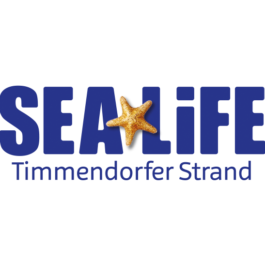 Bild zu SEA LIFE Timmendorfer Strand in Timmendorfer Strand