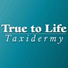 True To Life Taxidermy