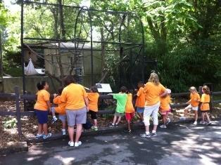 Kiddie Academy of Montgomeryville image 2