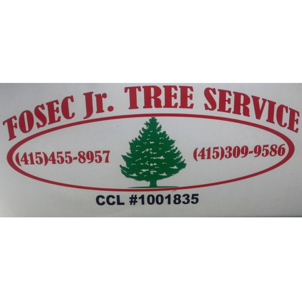Fosec Jr Tree Service Inc