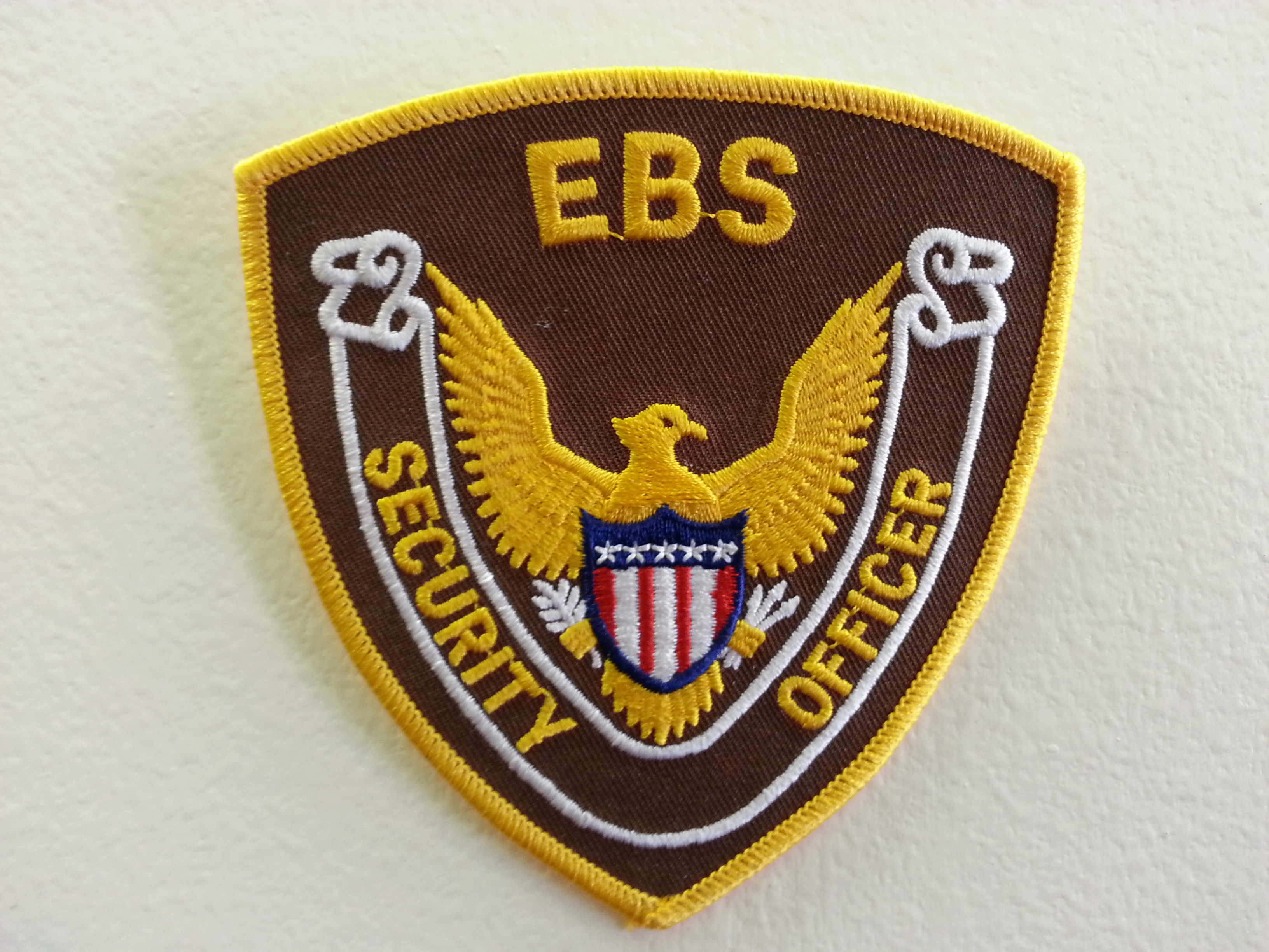 EBS SECURITY INC.