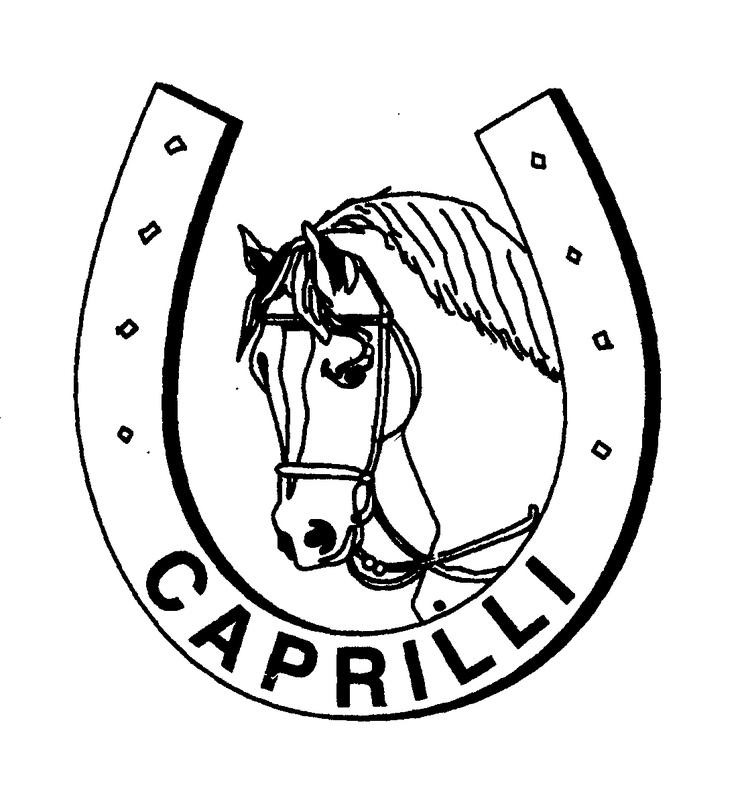 Manege Hippisch Centrum Caprilli