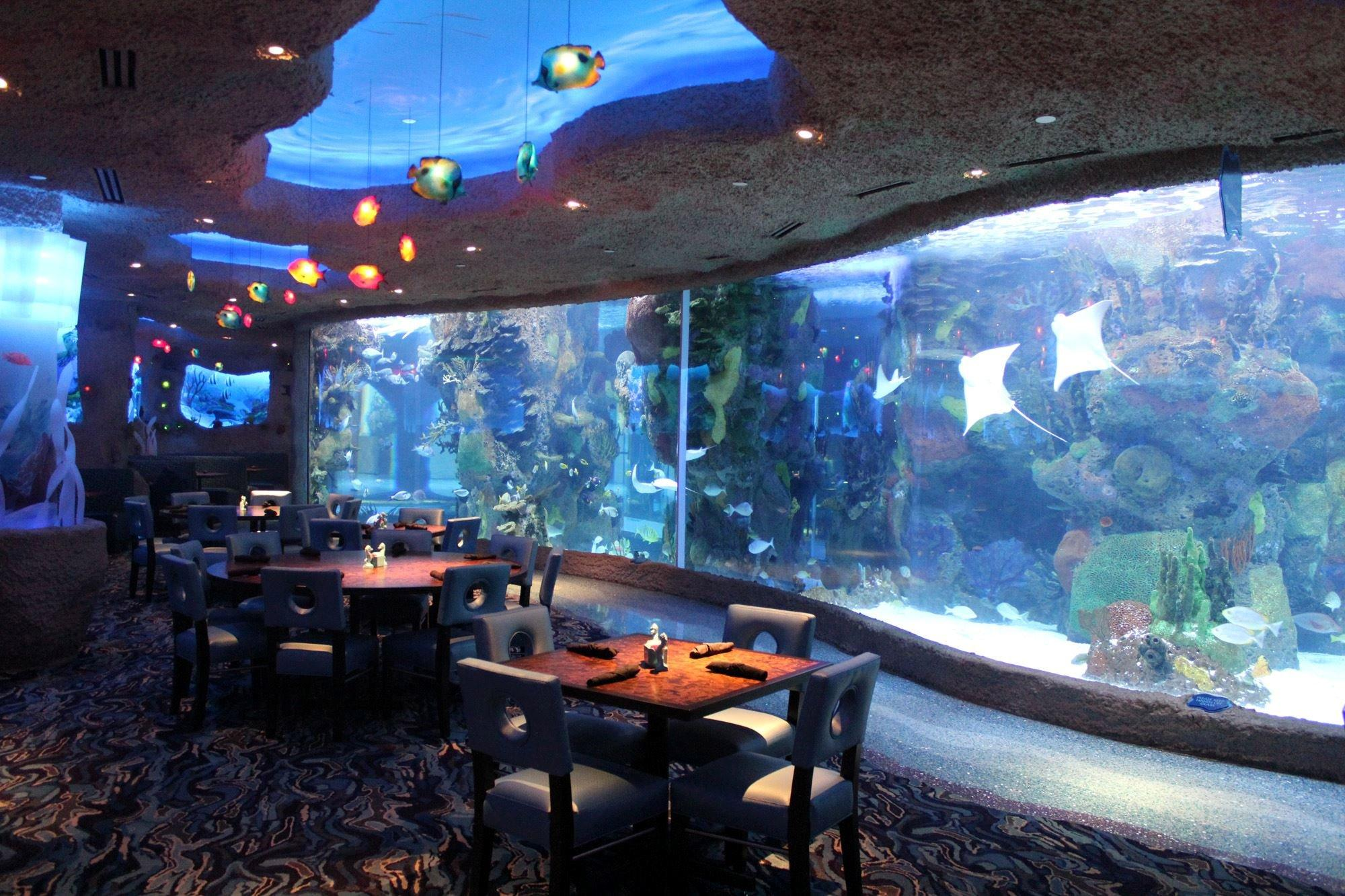 Aquarium restaurant coupons near me in nashville 8coupons for Fish grill near me