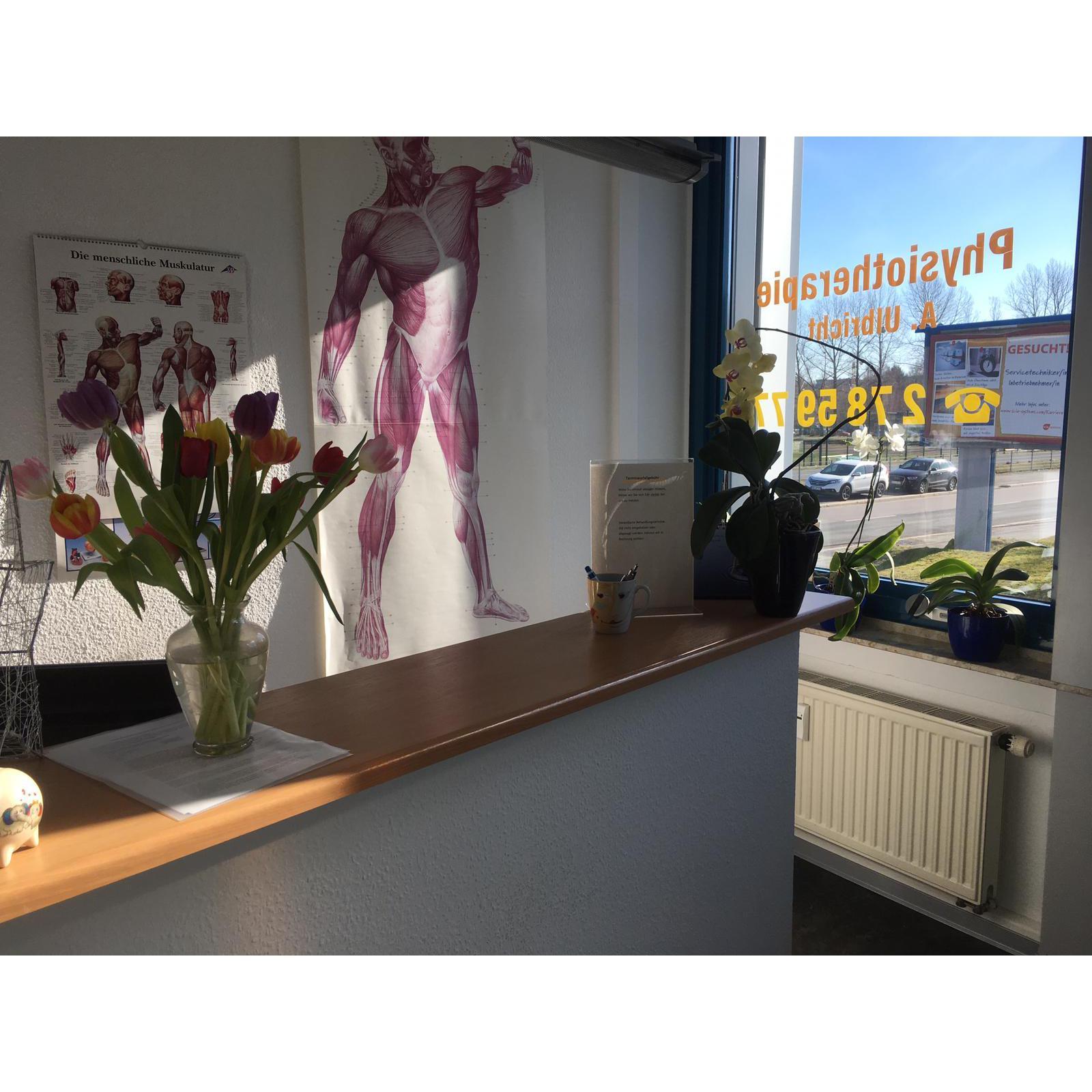 Bild zu Physiotherapie Antje Ulbricht in Chemnitz