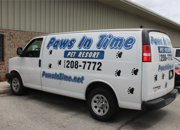 Paws In Time - ad image