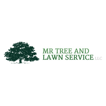 Mr tree and lawn service in gainesville fl 352 448 3 for Local lawn care services