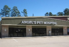 Angel's Pet Hospital