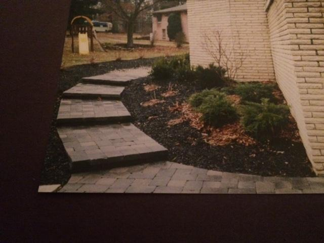 Green Missions Lawn Care and Landscaping