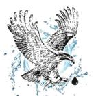 Les Systèmes d'Eau Eagle Rive-Sud Inc.