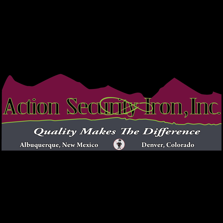 Action Security Iron - Denver, CO - Windows & Door Contractors