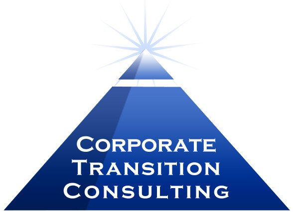Corporate Transition Consulting