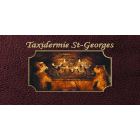Taxidermie St-Georges