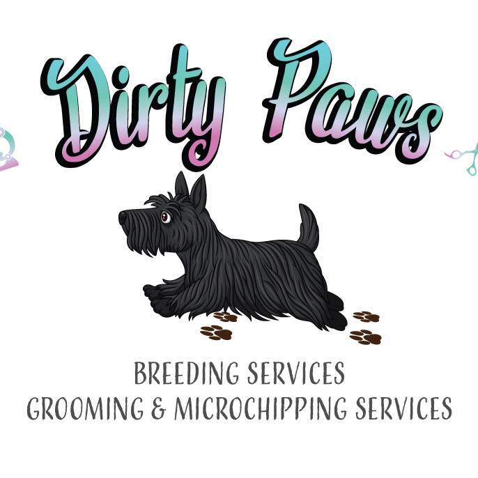 Dirty Paws Dog Grooming & Microchipping Bridgwater 07450 961840