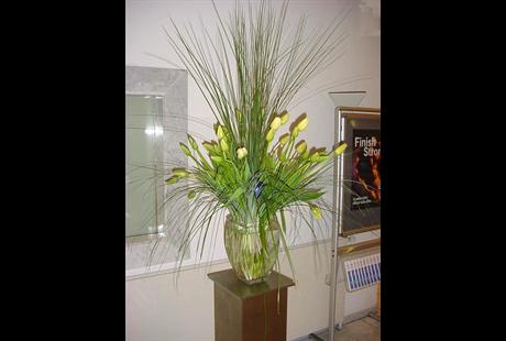 Stoffels - Florale Gestaltungen