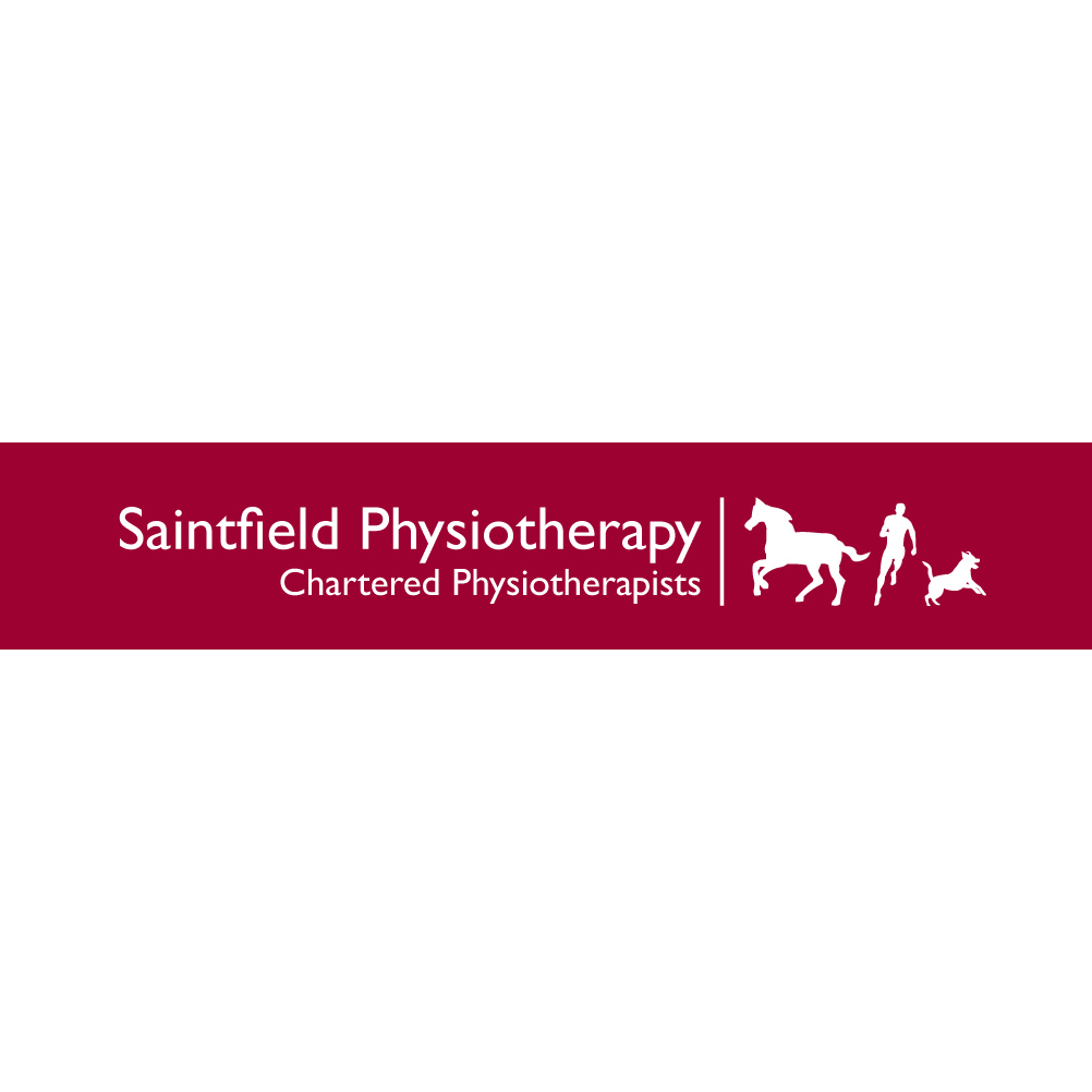 Saintfield Physiotherapy - Ballynahinch, County Down BT24 7AB - 07876 394647 | ShowMeLocal.com