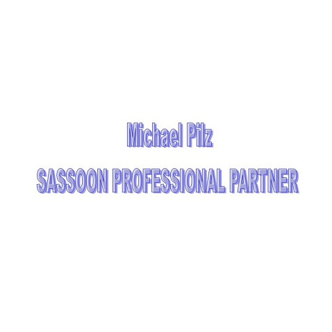 Michael Pilz SASSOON PROFESSIONAL PARTNER Logo