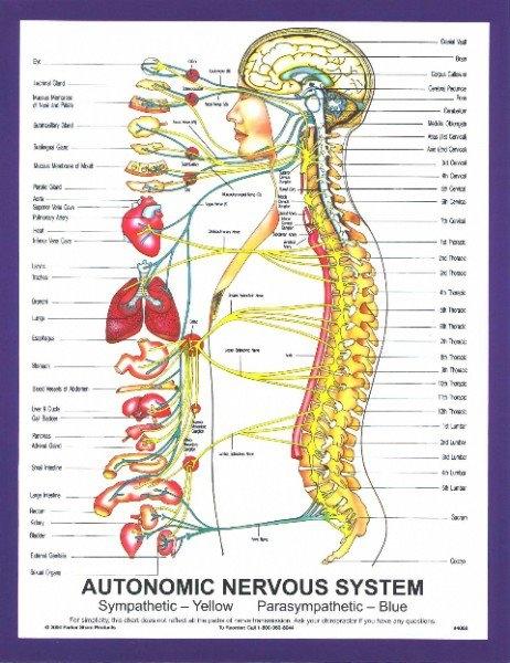 Unity Chiropractic Center image 6