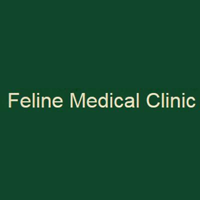Feline Medical Clinic