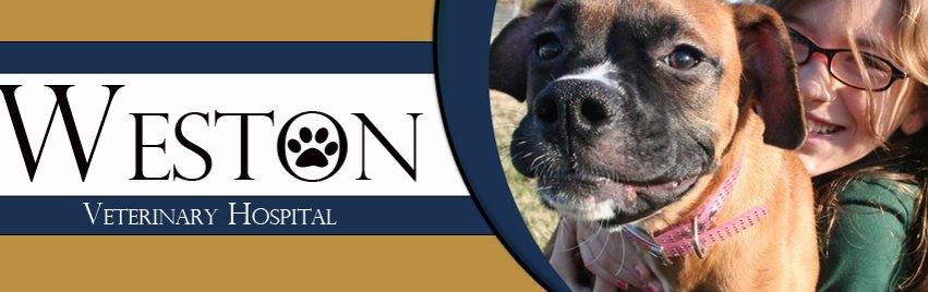 Weston Veterinary Hospital