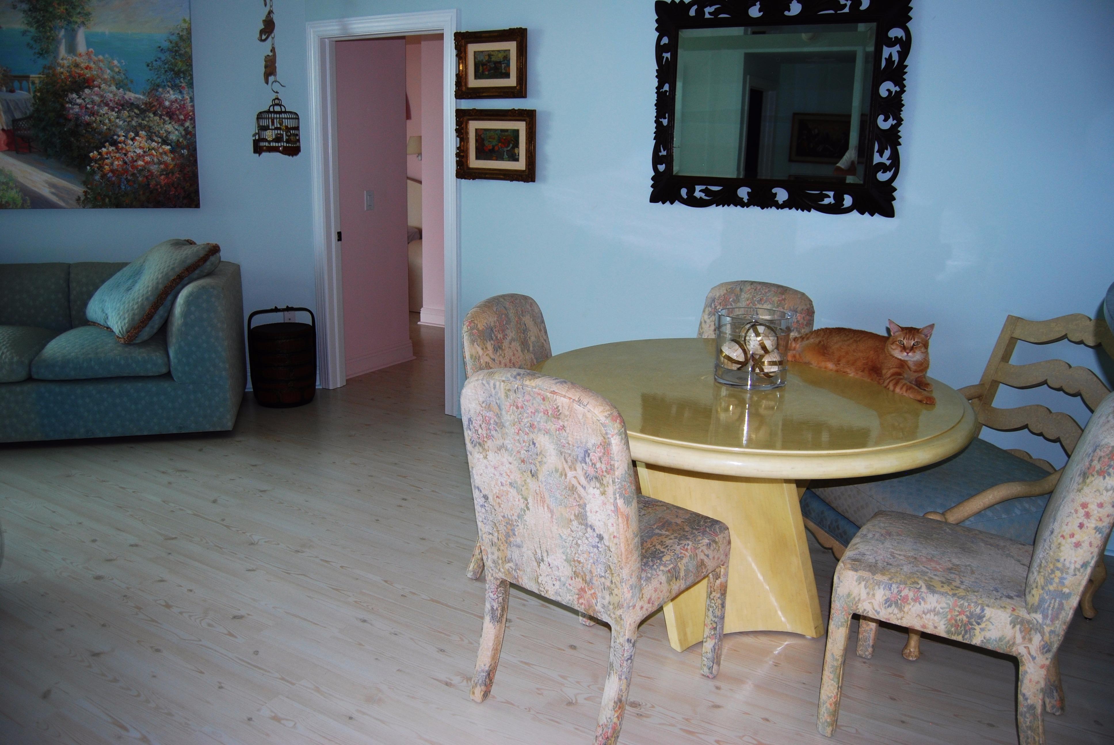 Flooring by tile experts inc sarasota florida fl for Columbia flooring inc