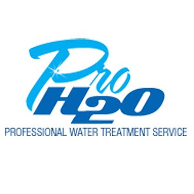 Pro H2O