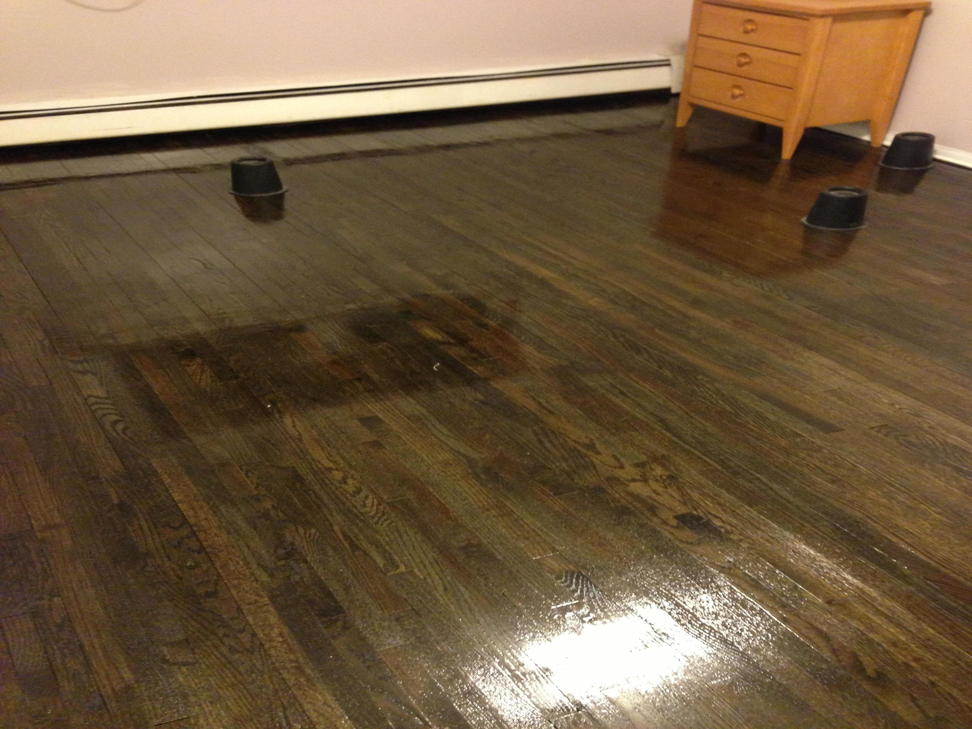 franks floors and refinishing in bronx ny 10462
