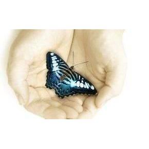 Divine Care Provider Ltd - Colchester, Essex CO5 9SH - 01621 929158 | ShowMeLocal.com