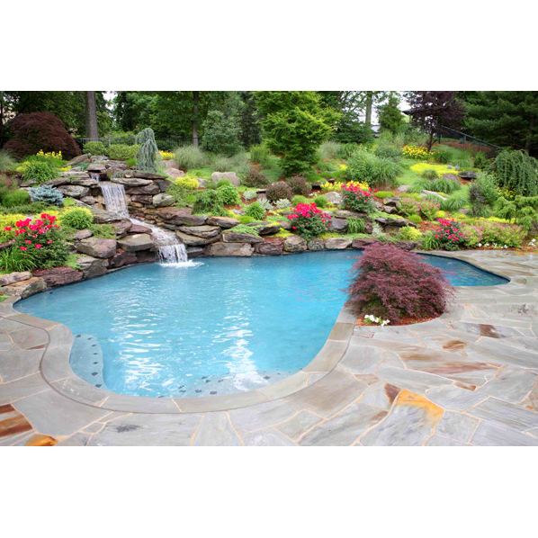 Alpha Pool & Spa Services