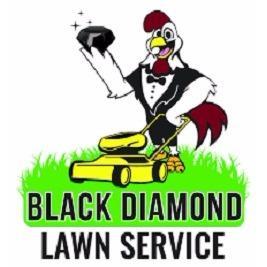 Black diamond lawn service charlotte north carolina nc for Local lawn care services