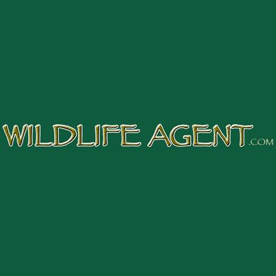 Hulick's Wildlife Control - Oneonta, NY - Pest & Animal Control