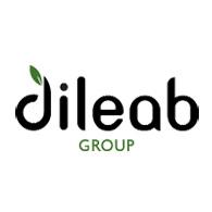 Dileab Group Llc