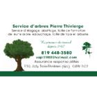 Service D'arbres Pierre Thivierge