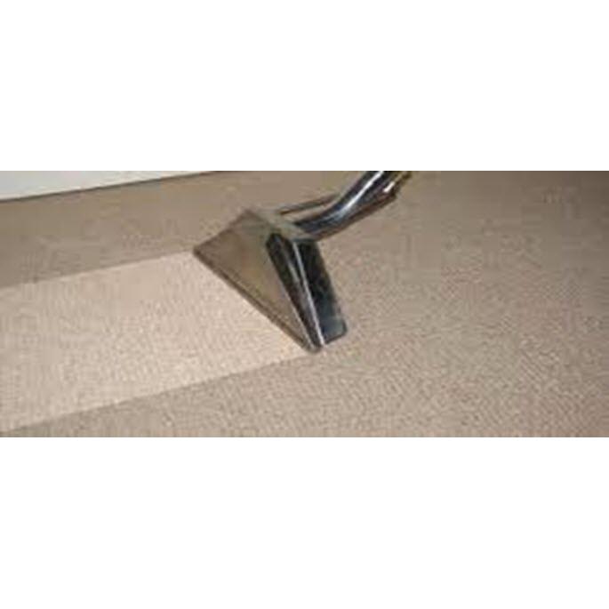 101 Carpet Care Plus