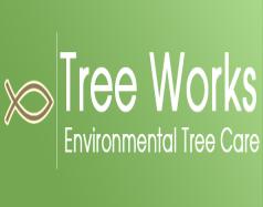 Tree Works - Land o' Lake, FL 34639 - (813)973-1931 | ShowMeLocal.com