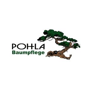 Bild zu Pohla Baumpflege Köln in Köln