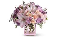 Orange Park Florist & Gifts - Orange Park, FL
