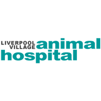 Veterans Organization in NY Liverpool 13088 Liverpool Village Animal Hospital 6770 Onondaga Lake Parkway  (315)451-5455