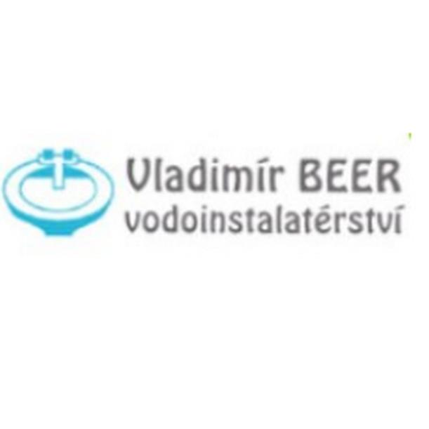 Vladimír Beer
