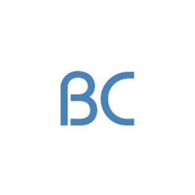 Benavidez Construction LLC