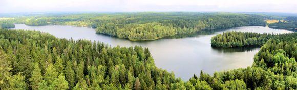 Metsänhoitoyhdistys Uusimaa ry Mäntsälän päätoimisto