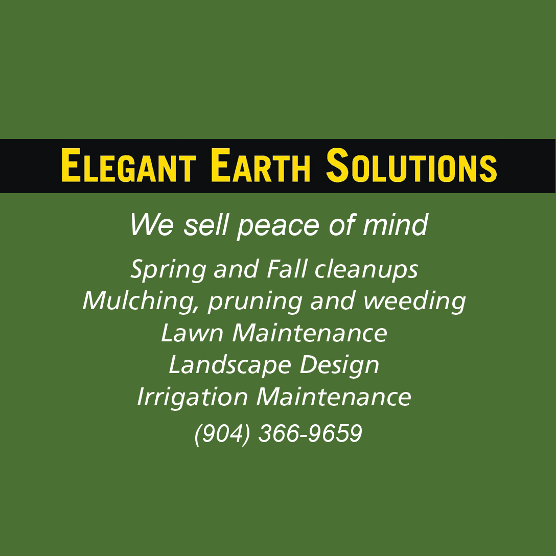 Elegant Earth Solutions