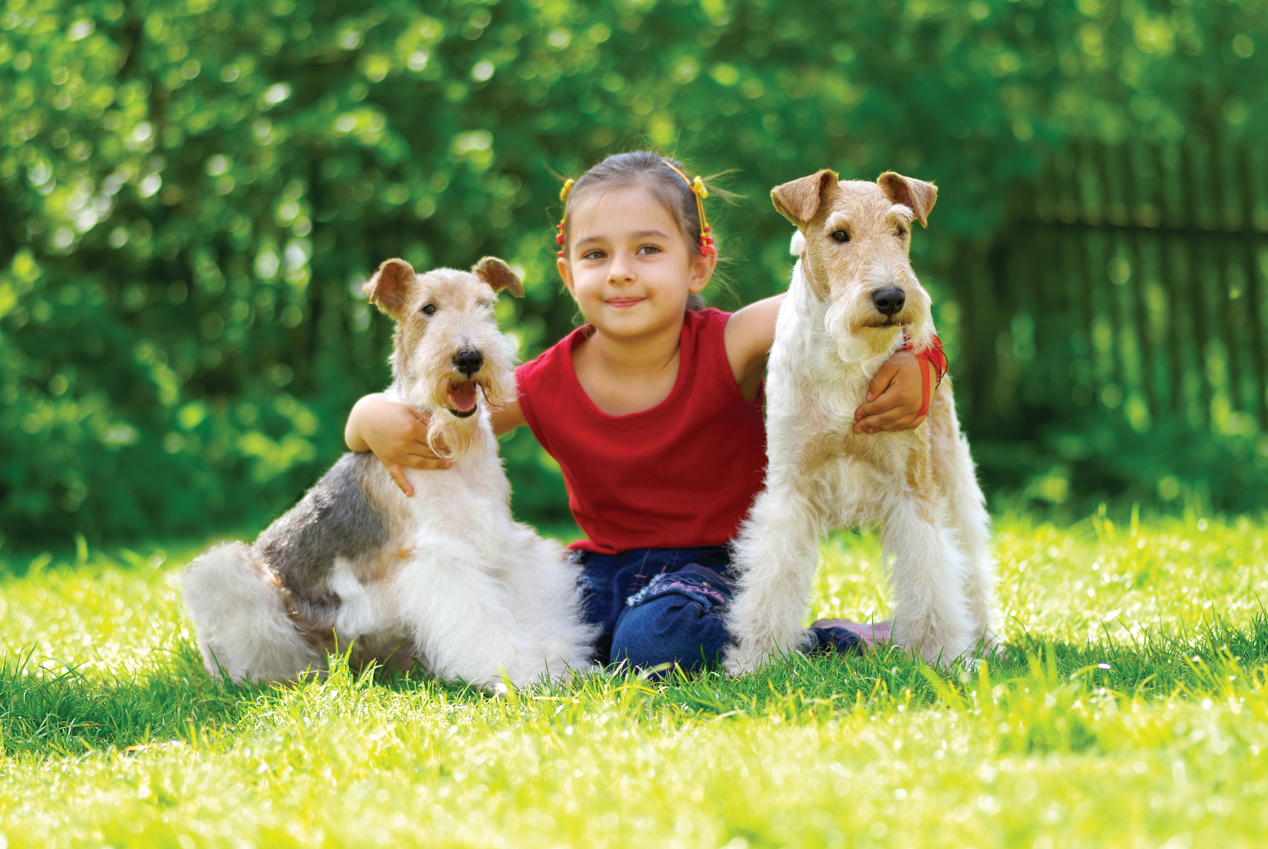 Kid and Dog Friendly Lawn Care
