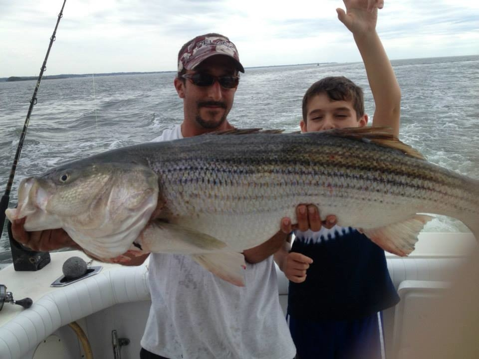 Islander sport fishing charters in old saybrook ct 06475 for Fishing trips in ct