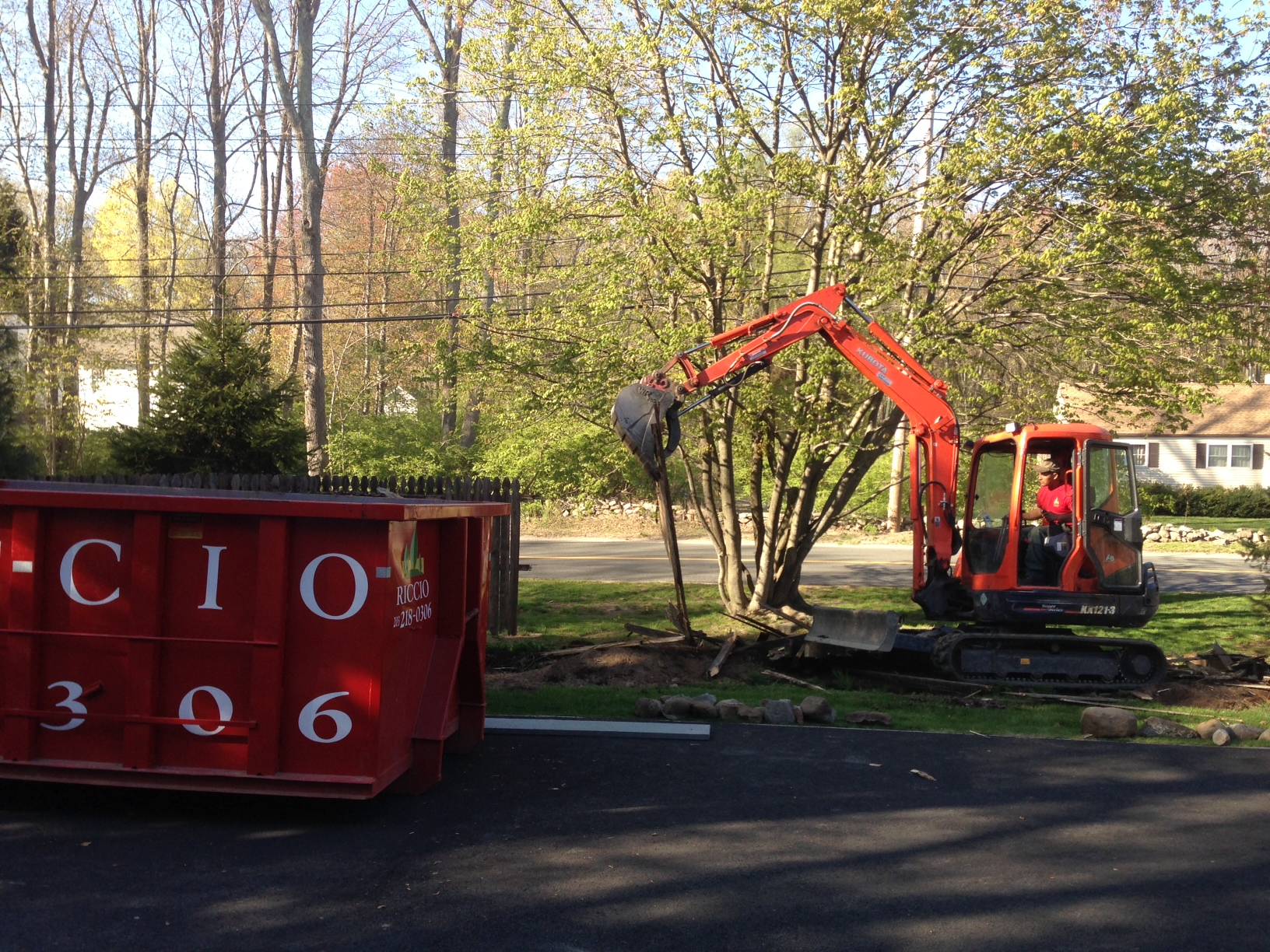 Riccio Landscaping & Tree Service image 7