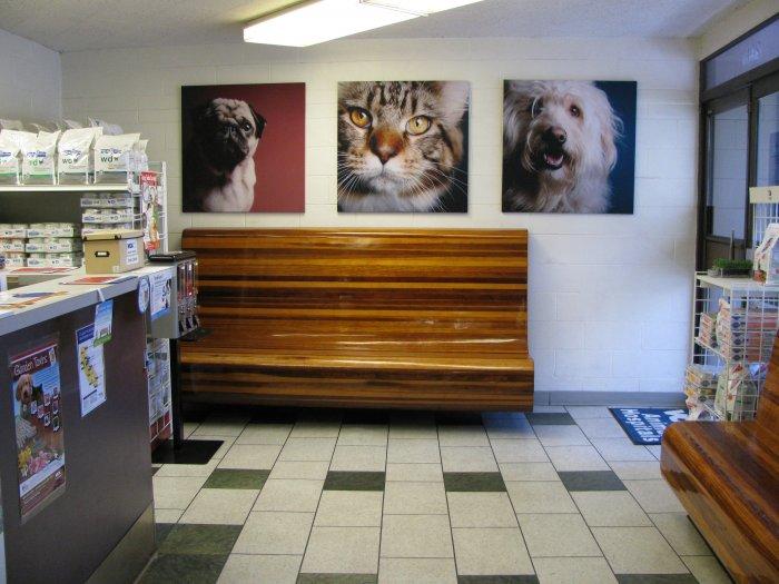 Vca Santa Monica Dog And Cat Hospital Reviews